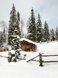Alpin koja i vinter i fjällängarna Övervintra landskapet i en skog nära sjön Antholz Anterselva, södra Tirol Royaltyfria Bilder