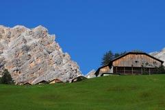 Alpin koja under den Sasso dellaen Croce, Alta Badia, Dolomites, Italien Arkivbild