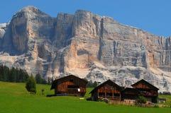 Alpin koja under den Sasso dellaen Croce, Alta Badia, Dolomites, Italien Fotografering för Bildbyråer