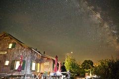 Alpin koja under stjärnklar himmel arkivfoto