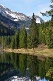 alpin lake Arkivbild