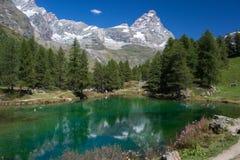 Alpin Lakereflexion Arkivbilder