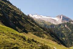 Alpin liggande och glaciär Arkivfoto
