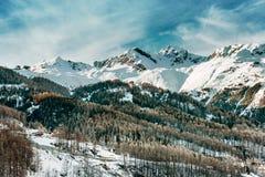 alpin liggandevinter Snö-korkade berg och skogen Royaltyfria Bilder