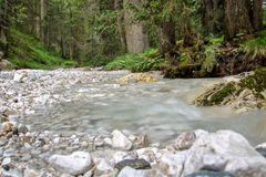 Alpin little river Stock Photos