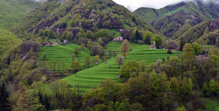 Alpin pittoresk by Royaltyfri Foto