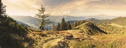 alpin plats Arkivbilder