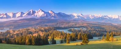Alpin plats för sommar royaltyfria bilder