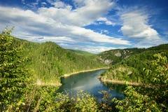 Alpin See in Montenegro stockbild