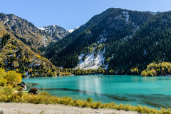 Alpin sjö Issyk Arkivfoton