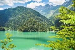 Alpin sjö Ritsa i Abchazien Arkivfoto
