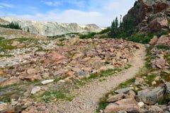 Alpin slinga i medicinpilbågeberg av Wyoming Fotografering för Bildbyråer