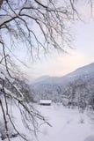 Alpin solnedgång VIII Arkivfoto