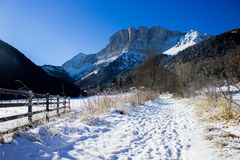 Alpin vinterdag Royaltyfri Fotografi