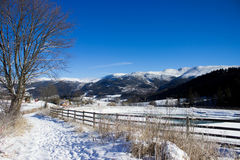 Alpin vinterdag Royaltyfri Bild