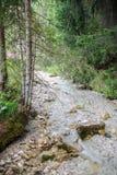 Alpin wenig Fluss lizenzfreies stockfoto