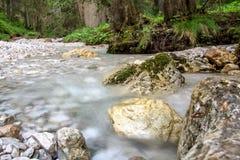 Alpin wenig Fluss stockbild