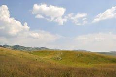 Alpina ängar av Durmitor, Montenegro arkivbild