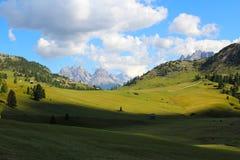 Alpina ängar i de italienska dolomitesna royaltyfria bilder