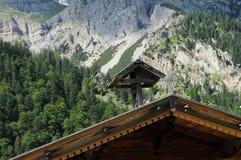 alpina 008 Arkivbild