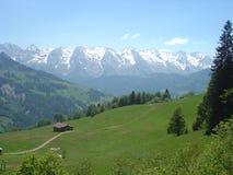 alpina berg Fotografering för Bildbyråer