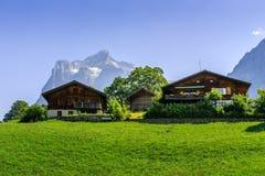 Alpina chalet - Grindelwald Arkivbild