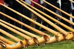 alpina horns Royaltyfria Bilder