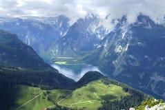 alpina maxima Royaltyfri Fotografi