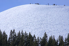 alpina squiggly spår Arkivfoto