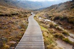 Alpine Überfahrt Tongariro Stockfotos