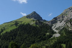 Alpine 005 Stockfoto