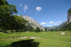 Alpine 006 Lizenzfreie Stockfotografie
