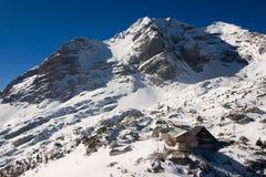 Alpine Ansicht des Winters Lizenzfreies Stockfoto