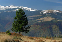 Alpine Ansicht zum Retezat Berg lizenzfreies stockfoto