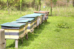 Alpine apiary Stock Images