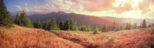 Alpine autumn in Gorgany Stock Photos