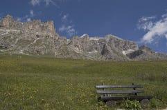 Alpine Bank Lizenzfreie Stockfotografie