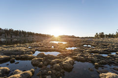 Alpine Bog Sunrise Stock Photos