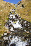 Alpine brook Stock Photo