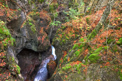Alpine canyon in the beautiful autumn forest near Kessel Waterfall in Brandnertal valley, Voralberg, Austria, HDR Royalty Free Stock Images