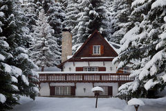 Alpine chalet in Aran Valley. Surrounded by forest of firs Royalty Free Stock Images