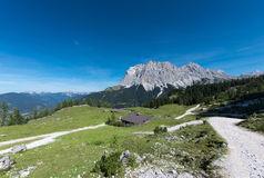 Alpine chalet landscape with green meadow Royalty Free Stock Photos