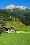 Alpine chalet and meadows Stock Photos
