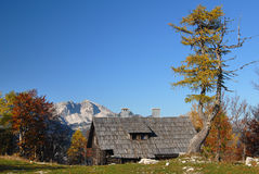 Alpine cottage Royalty Free Stock Photography