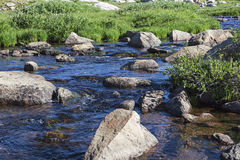 Alpine country cold fishing stream Royalty Free Stock Images