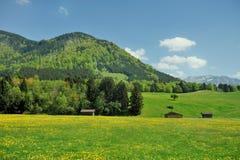 Alpine countryside Royalty Free Stock Photos