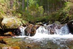 Alpine Creek Immagini Stock