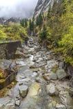 Alpine Creek Fotografie Stock