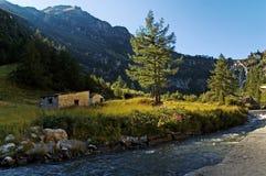 Alpine Creek fotos de stock