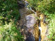 Alpine Creek que cae abajo la roca Imagenes de archivo
